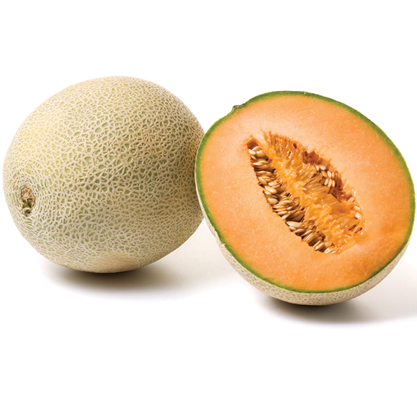 Cantaloupe Produce Market Guide Alibaba.com owns large scale of cantaloupe melon images in high definition, along with many other relevant product images melon. cantaloupe produce market guide