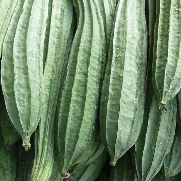 Chinese Okra   Produce Market Guide