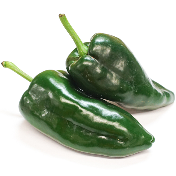 Variety Overview Poblano Peppers