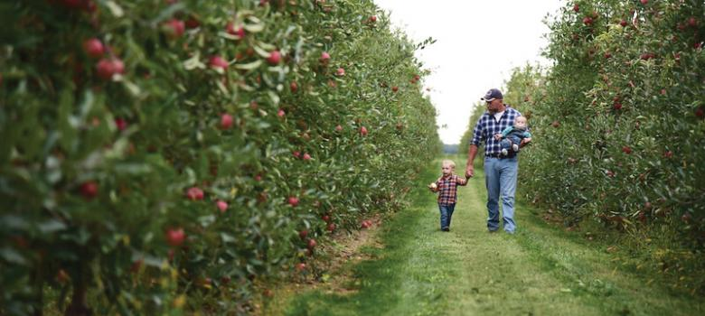 Eastern Apples Branded Varieties Gear Up For Good Season