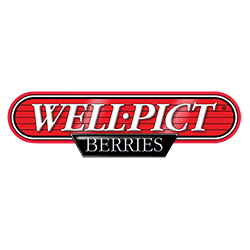Well Pict Berries