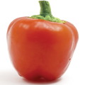 Mexi-bell pepper