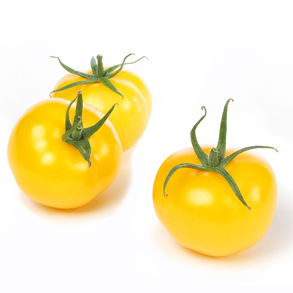 Yellow Tomatoes | Produce Market Guide